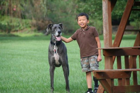 Image of our Fazzino contest winners, a boy and his great dane