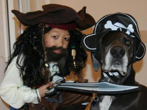 Boy and his great dane dog dressed up like pirates for Halloween