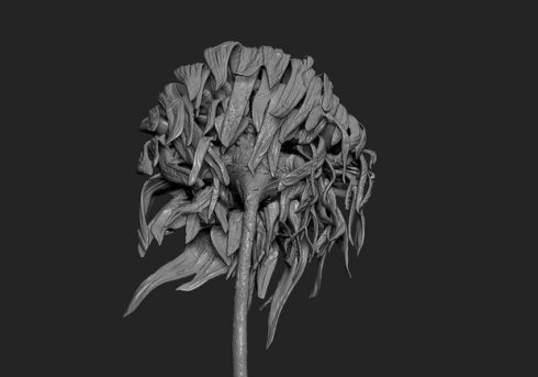 "Close up black and white image of the 3D bronze sculpture of Vincent Van Gogh's famous 1888 painting ""Sunflowers"""