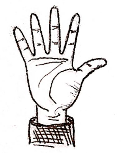 How to draw hand palm lines