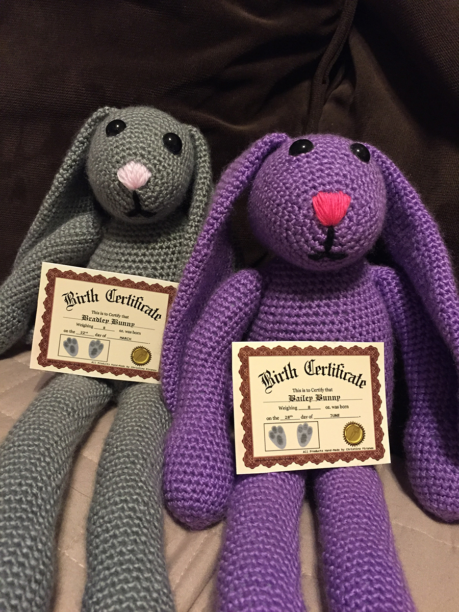 Grey and purple bunny rabbits sitting next to each other holding paper birth certificates