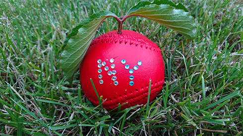 A baseball painted red with a stem to look like an apple and NY in crystals on it sits in the grass